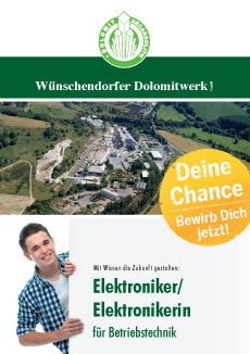 Flyer Elektroniker (download)